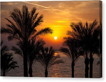 Sunrise Over The Red Sea Canvas Print by Jane Rix
