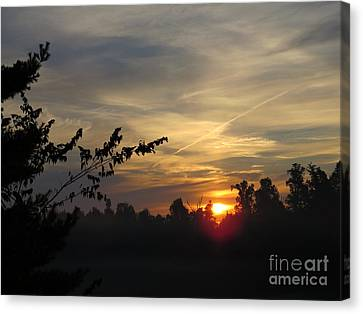 Sunrise Over The Trees Canvas Print