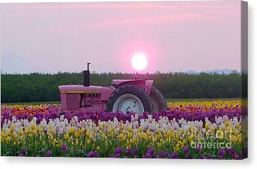 Sunrise Pink Greets John Deere Tractor Canvas Print