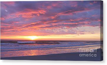 Sunrise Pinks Canvas Print