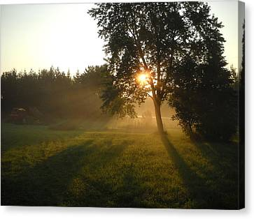 Sunrise Shadows Through Fog Canvas Print by Kent Lorentzen