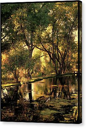 Sunrise Springs Canvas Print by Paul Cutright