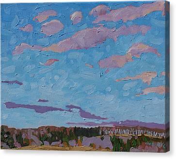 Sunrise Stratocumulus Canvas Print by Phil Chadwick
