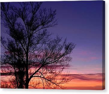 Sunrise, Sunrise Canvas Print by Adrienne Petterson