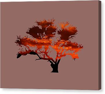 Sunrise Tree 2 Canvas Print