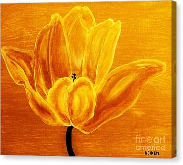 Sunrise Tulip Canvas Print by Marsha Heiken