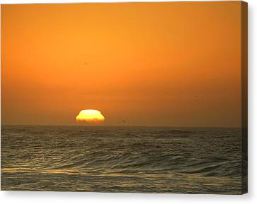 Sunset 12 03 16 Three Close Up Canvas Print