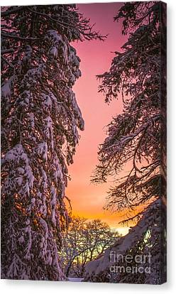 Sunset After Snow Canvas Print by Mike Ste Marie