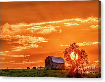 Nicholas County Canvas Print - Sunset And Barn by Thomas R Fletcher