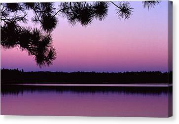 Canvas Print featuring the photograph Sunset And Pine 2 by Lyle Crump