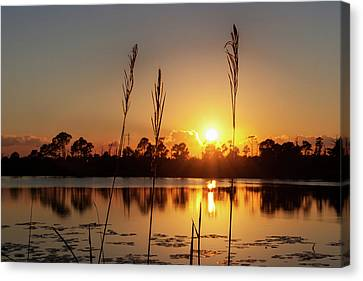 Canvas Print featuring the photograph Sunset At Gator Hole 3 by Arthur Dodd