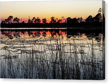 Canvas Print featuring the photograph Sunset At Gator Hole by Arthur Dodd