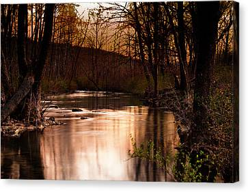 Sunset At King's River Canvas Print by Tamyra Ayles