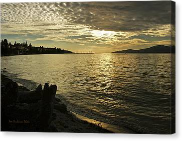 Sunset At Kitsilano Canvas Print by Tom Buchanan