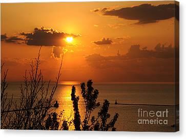 Sunset At Lake Huron Canvas Print by Joe  Ng