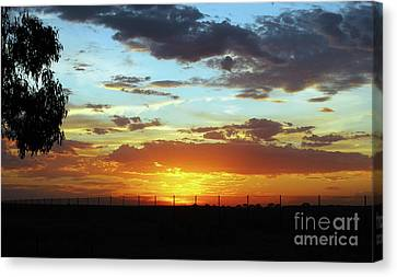 Sunset At Little River Victoria Canvas Print by Lexa Harpell