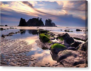 Sunset At Shi Shi Beach Canvas Print by Alvin Kroon