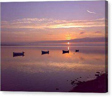 Sunset At The Estuary Canvas Print by Martina Fagan