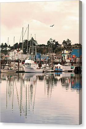 Sunset At The Marina Canvas Print by Diane Schuster