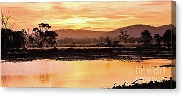 Sunset At Triabunna Tasmania Canvas Print by Lexa Harpell