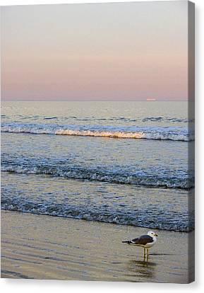 Sunset Atlantic Beach Florida Canvas Print by Ann Tracy