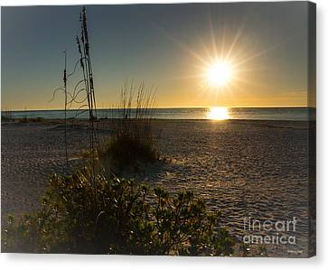 Sunset Beach Canvas Print by Rebecca Hiatt