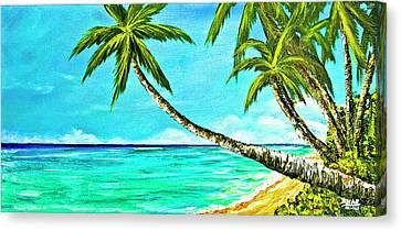 Sunset Beach#370  Canvas Print by Donald k Hall