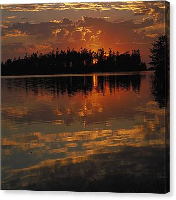 Sunset Behind The Trees On A Lake Canvas Print by Gillham Studios