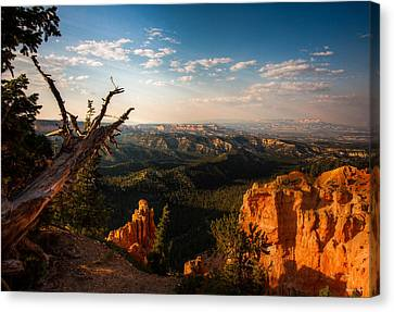 Sunset Bryce Canvas Print by Rebecca Hiatt