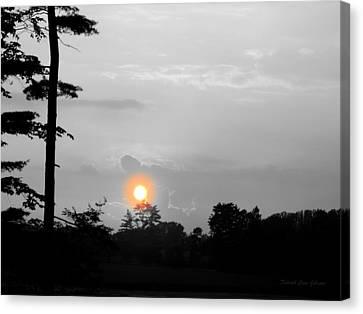 Sunset-bw Canvas Print by Deborah  Crew-Johnson