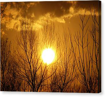 Sunset Canvas Print by Dottie Dees