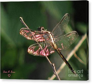 Canvas Print featuring the photograph Sunset Dragonfly by Donna Brown