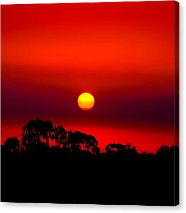 Sunset Dreaming Canvas Print
