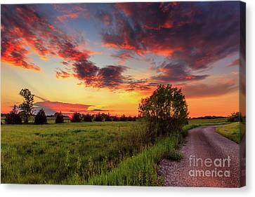 Sunset Drive Canvas Print by Andrew Slater