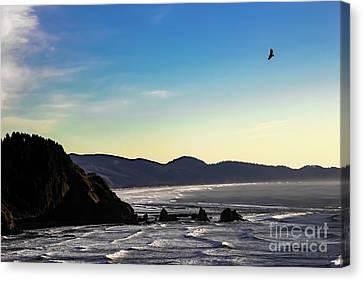 Sunset Eagle Canvas Print by Jon Burch Photography