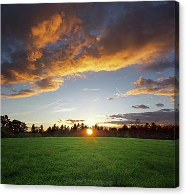 Sunset Field Canvas Print by Jerry LoFaro