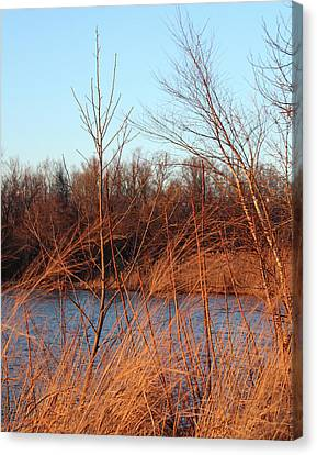 Sunset Field Over Water Canvas Print