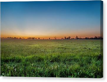 Sunset Fields Canvas Print by Az Jackson
