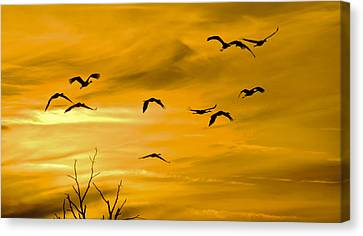 Canvas Print featuring the photograph Sunset Fliers by Wanda Krack