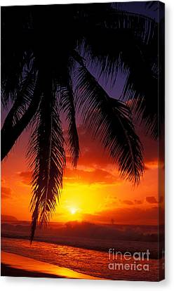 Sunset From The Beach Canvas Print by Vince Cavataio - Printscapes