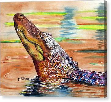 Sunset Gator Canvas Print