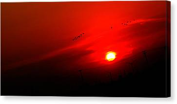 Sunset Geese Leaving Disappearing City - 0814  Canvas Print