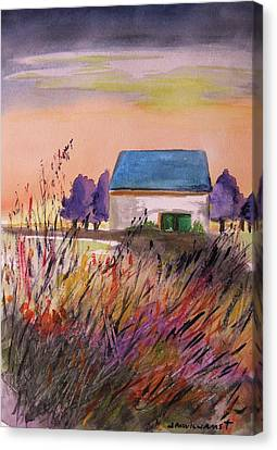 Sunset Grasses Canvas Print by John Williams