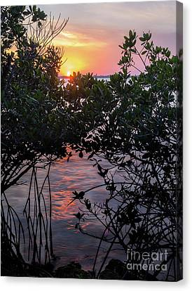 Sunset, Hutchinson Island, Florida  -29188-29191 Canvas Print by John Bald