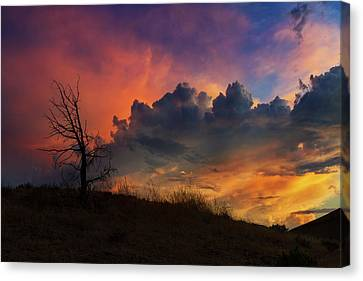 Sunset In Central Oregon Canvas Print by David Gn