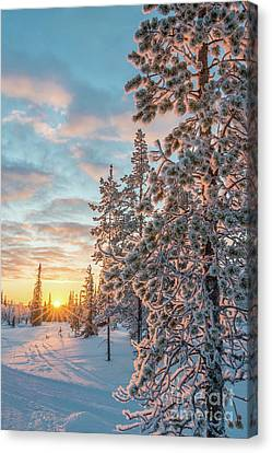Canvas Print featuring the photograph Sunset In Lapland by Delphimages Photo Creations