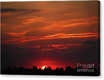 Sunset In The City Canvas Print by Mariola Bitner