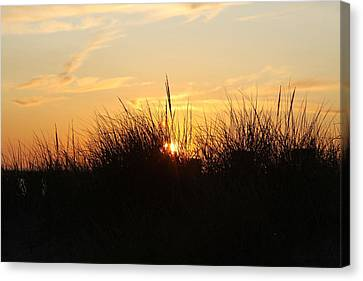 Sunset In The Grass Canvas Print by Chuck Bailey