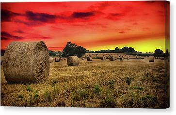 Sunset In The Hay Canvas Print