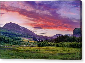 Canvas Print featuring the photograph Sunset In The Meadow by Dmytro Korol